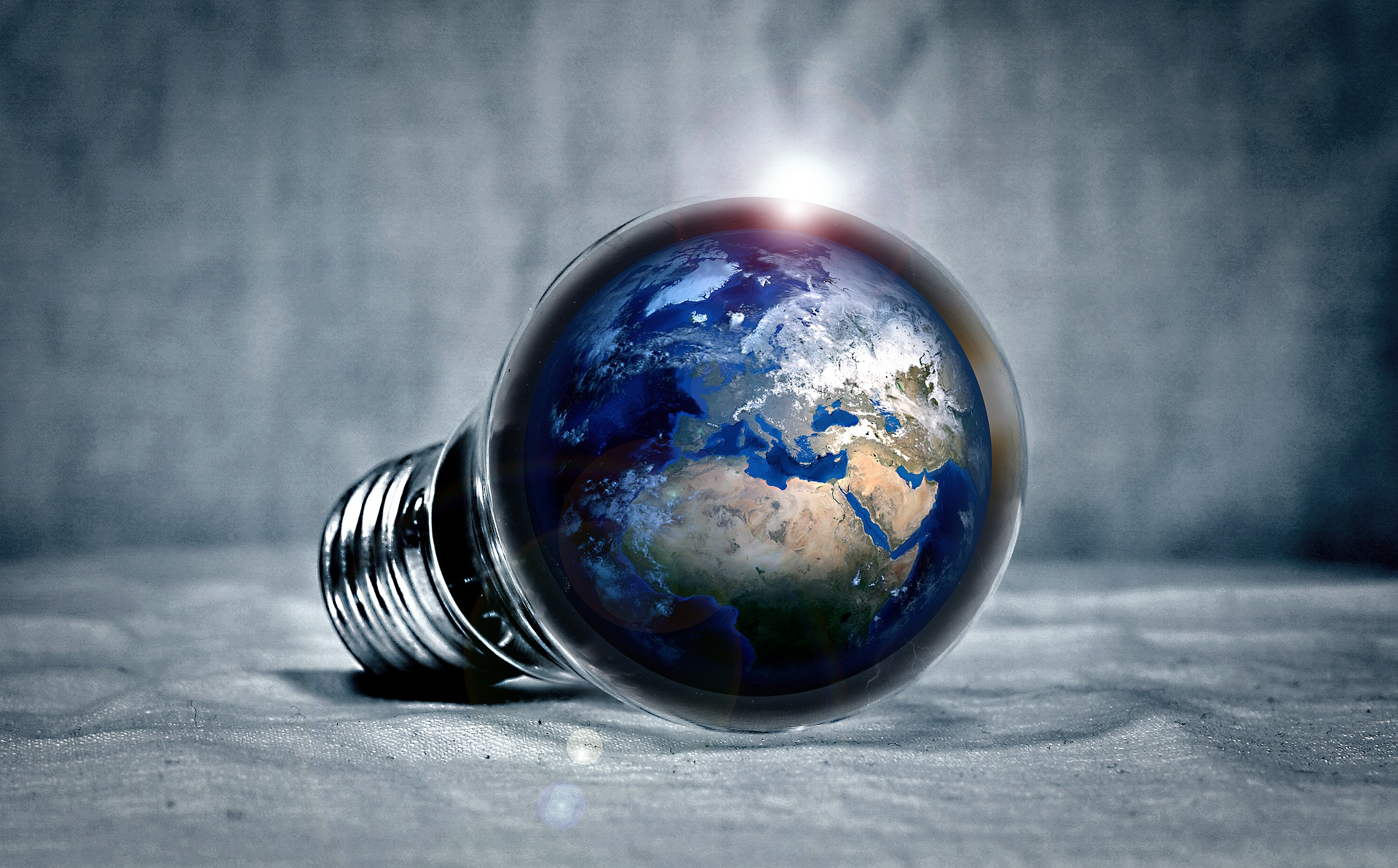 Revolution: Fungi. Planet Earth inside a lightbulb representing a new idea for better living. Enable images to view.