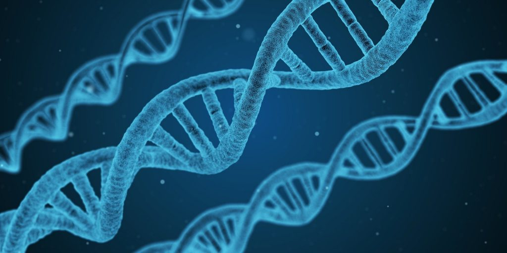 why genetics are so important in mushroom cultivation. Double Helix DNA on Blue Background